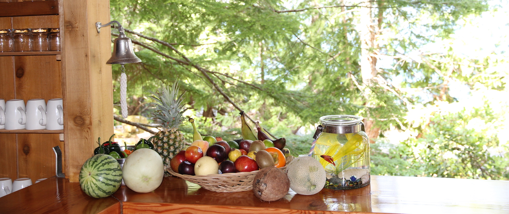 Healthy fresh fruit at the Cabana Cafe bar area at the eco resort