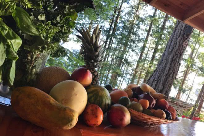 The fruit bowl overflowing with fresh, healthy fruit at Cabana Desolation Eco Resort