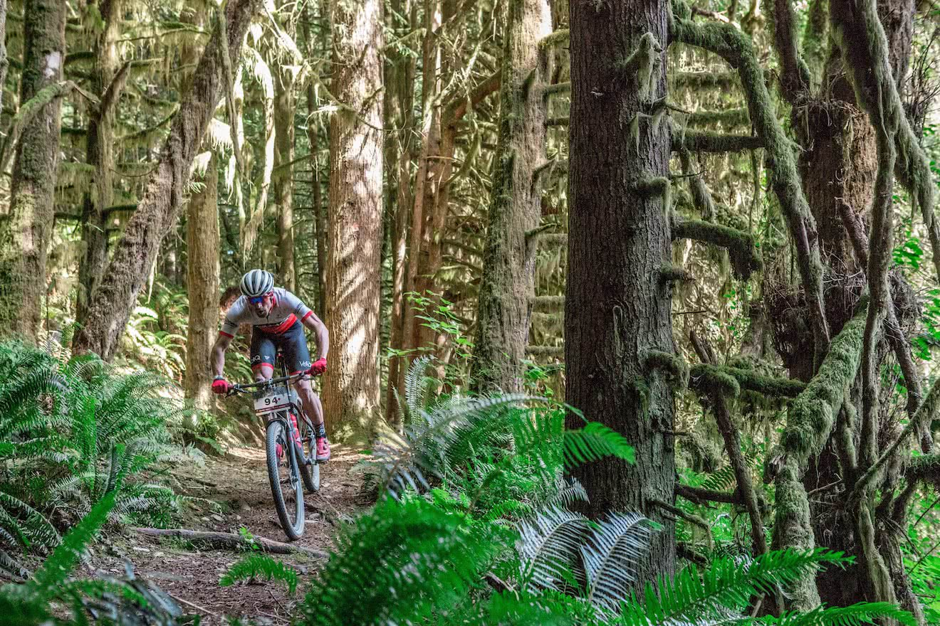 A local rider mountain biking on the trails in Powell River