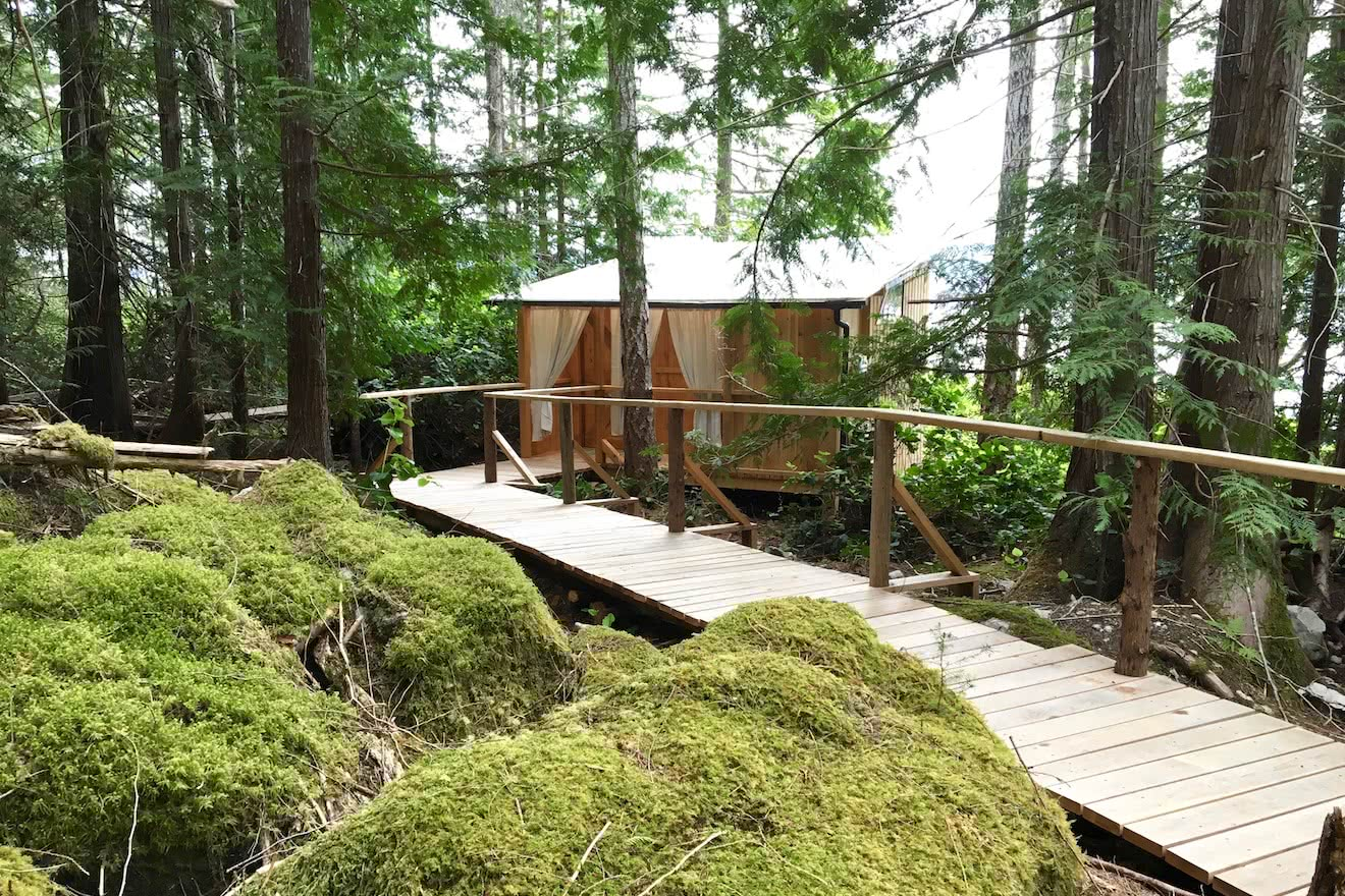 The cedar boardwalk connecting each accommodation with each other in the forest in BC