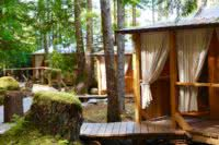 Exterior shot of three cabanas and cedar boardwalk in the British Columbia rainforest