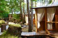 Exterior shot of three cabanas and cedar boardwalk in the British Columbia rainforest