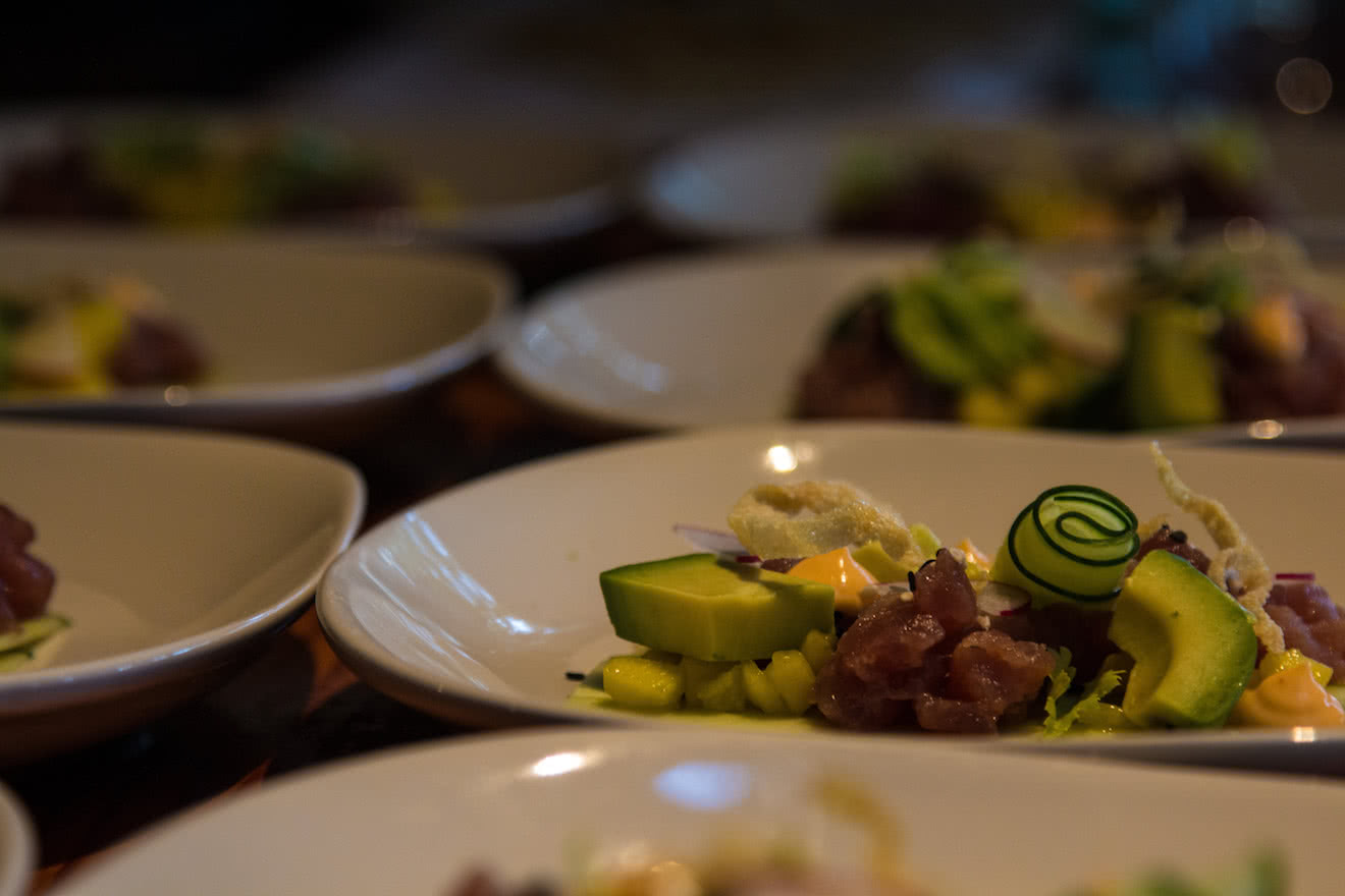 A creative appetizer of ahi tuna, cucumber, avocado & sesame aioli at our off-grid eco resort