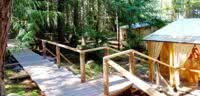 Cedar boardwalks link the cabanas with each other and the Cabana Cafe