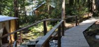 Our boardwalk connects all the buildings at Cabana Desolation and removes most of the impact on the delicate forest floor from human footsteps