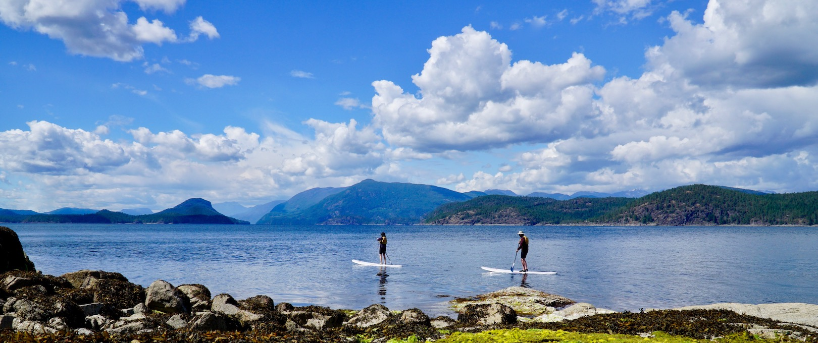 A man and his son stand up paddle boarding at an extreme low tide in Desolation Sound