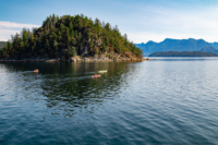 Three kayakers leave Cabana Desolation Eco Resort in the direction of the Curme Islands in Desolation Sound